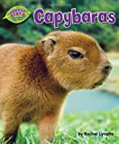 img - for Capybaras (Jungle Babies of the Amazon Rain Forest) book / textbook / text book