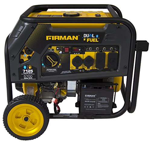 Firman H05751 7100/5700 Watt Dual Fuel Electric Start Generator, CARB For Sale