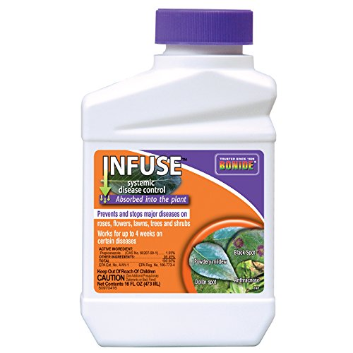 (Bonide PRODUCTS INC 037321001485 148 Infuse System Fungicide, Pint, 1,)