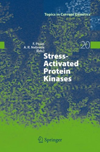 Stress-Activated Protein Kinases (Hb)