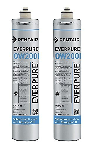 Everpure EV9619-01 OW200L Cartridge (Pack of 2)