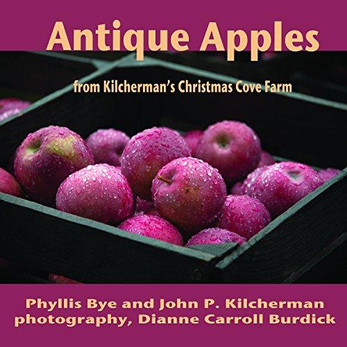 Antique Apple - Antique Apples