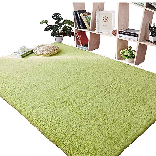 Lyfreen Ultra Soft 3.5CM Thicken Shag Rug 39.37 by 78.74 inch Super Soft Shag Area Fur Rugs Fluffy Rugs Anti-Skid Shaggy Area Rug Dining Room Home Bedroom Carpet Floor Mat