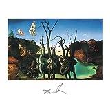 Salvador Dali Swans Reflecting Elephants White Border Art Print Poster - 16x20