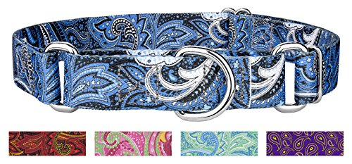 Country Brook Design Blue Paisley Martingale Dog Collar - Medium Blue Paisley Note