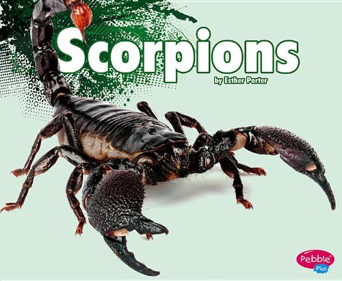 (Scorpions (Creepy Crawlers))