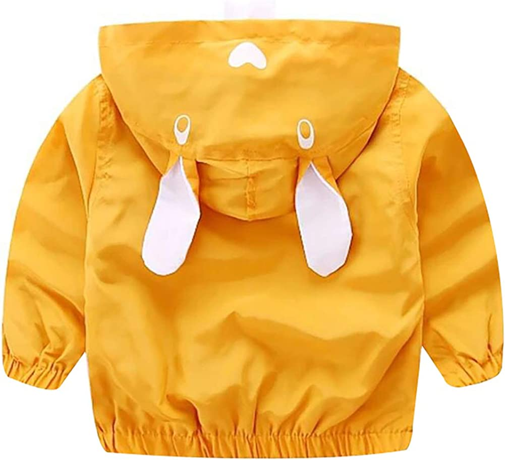 Baby Boys Spring Autumn Hoodie Windproof Jacket 3D Cartoon Thin Coat Vibrant Outfit Clothing
