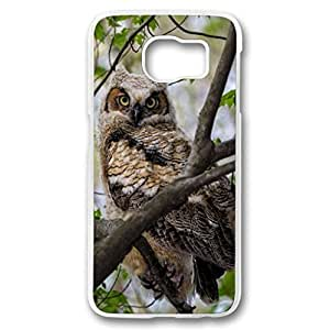 Galaxy S6 case, white PC Fashion Designed Phone Case for Samsung Galaxy S6 - Great Horned Owlet