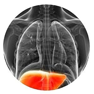 alfombrilla de ratón 3d rindió la ilustración del hígado masculina - ronda - 20cm