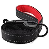 ITERY Dog Leash Reflective Leash Extra Thick Durable Pet Walking Leash with Comfortable Grip 6ft long 1 inch Wide Ideal Leash for Small Medium Large Dogs