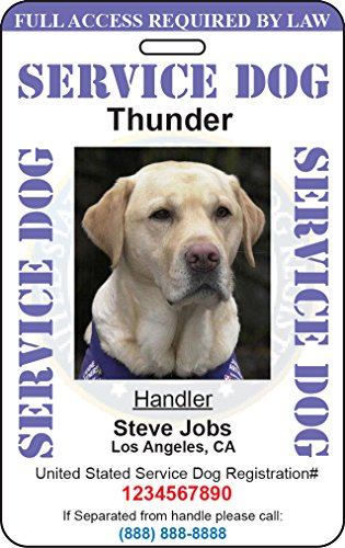 Custom Service Dog ID Card (Purple) (Custom Service Dog Id Card compare prices)