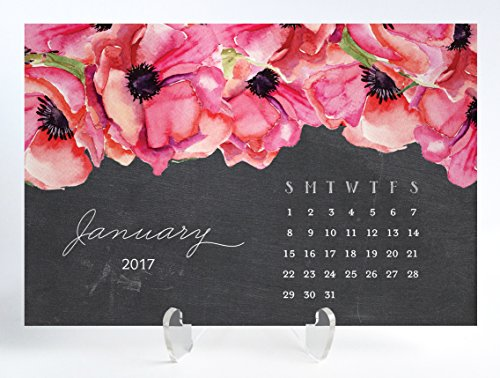 Pink Anemone 2017 Desk Calendar with Clear Acrylic Stand Chalkboard Pink Watercolor Anemone Planner Cards Office Gift 4 inches x 6 inches Leona Pink (Anemone Pouch)