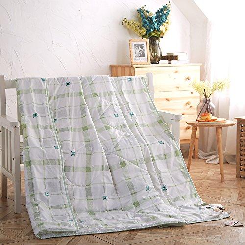 naturety thin comforter for summer lightweight bed quilt down blanket twin green bedroom store. Black Bedroom Furniture Sets. Home Design Ideas