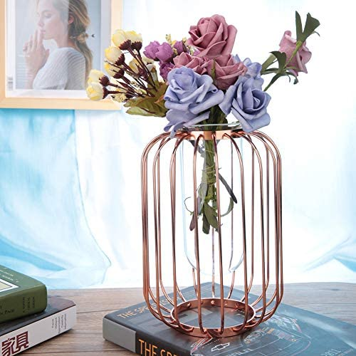 AUNMAS Iron Flower Vase Nordic Wrought Crystal Clear Lantern-Shaped Metal Wire Transparent Glass Tube Gold Candle Planter Holder Living Room Decor