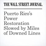 Puerto Rico's Power Restoration Slowed by Miles of Downed Lines | Arian Campo-Flores