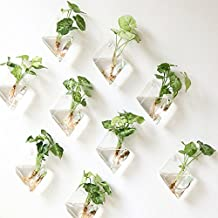 NewDreamWorld's Set of 9 Rhombus glass wall vase//indoor wall planters//rooting plants in water on your wall//TV wall decorations//Housewarming Gift (large)