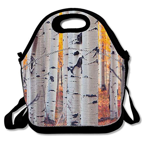 (Colorado Aspen Birch Nature Autumn Reusable Neoprene Lunch Bag Insulated Lunch Box Tote for Women Men Adult Kids Teens Boys Teenage)