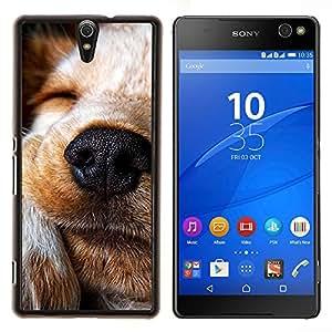 LECELL--Funda protectora / Cubierta / Piel For Sony Xperia C5 Ultra -- Perro Terrier Jack Russell Labrador Retriever --