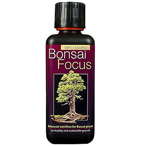 10.5oz 300ml Bonsai Focus professional Concentrated liquid plant feed Makes 60Litres - (10.5 Ounce Liquid)
