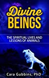 Divine Beings: The Spiritual Lives and Lessons of