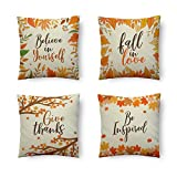 Dessie Set of 4 Fall Pillow Covers 18x18 | Thanksgiving Pillow Covers for Autumn Decor | Fall Foliage Farmhouse Decorative Throw Pillow Covers