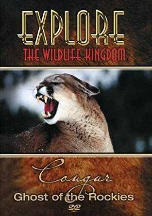 Amazoncom Explore The Wildlife Kingdom Cougar Ghost Of