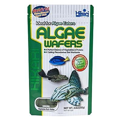 Hikari Tropical Algae Wafers for Bottom Feeding Herbivorous Fish Food from Hikari