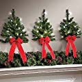 Set of 3 LED White Lights w/ Timer Wireless Battery Operated Wall Hanging Swag Wreath Christmas Tree Decor Red Bow Faux Pine Greenery Indoor Home Accent Lighted Decoration