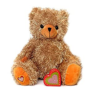 My Baby's Heartbeat Bear - Stuffed Animals with a 20 Second Voice Recorder Perfect for Gender Reveal
