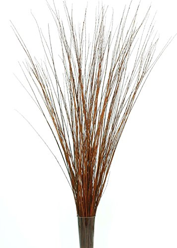 GreenFloralCrafts 4-5 ft Tall 3-Tone Light Mahogany Brown Asian Willow, Bunch of 90-100 stems & Botanical Accent (Vase Not Included) (Grass Willow)