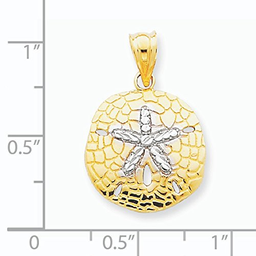 14 carats-Bicolore taille diamant poli Sand Dollar Pendentif-Dimensions :  24 x 17 mm JewelryWeb