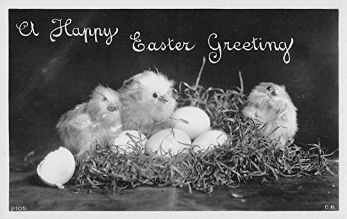 Postcard Easter Photo (Group Of 4 Happy Easter Greeting Chicks Nest Real Photo Antique Postcards K81865)