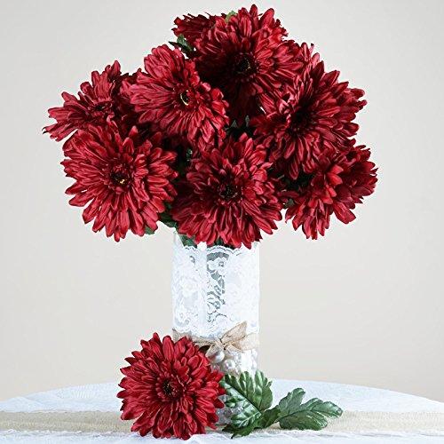 gerbera daisy bush - 1
