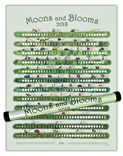 lunar calendar 2018 moons blooms buy online in ksa kitchen products in saudi arabia see prices reviews and free delivery in riyadh khobar jeddah
