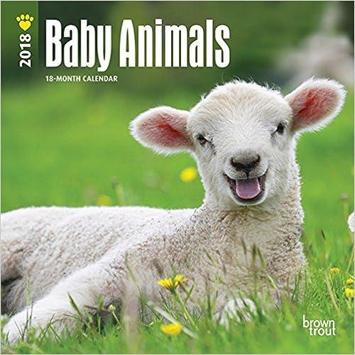 Baby Animals 2018 7 x 7 Inch Monthly Mini Wall Calendar, Animals Domestic Baby Animals