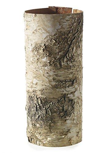 - Birch Bark Tube - 12