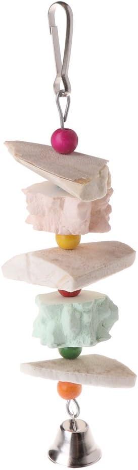 WT-DDJJK Juguetes para moler Dientes de Loro, Ardilla de pájaro, Piedra de Calcio, Hueso de Sepia con Campana