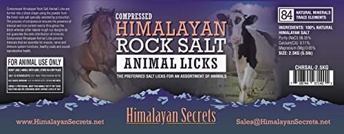Compressed Himalayan Salt Lick for Horse, Cow, Goat, etc. Made from Specially Selected Higher Quality Himalayan Salt - Evenly Distributed Minerals - 100% Pure & Natural (3 Sizes) (Set of 8 (5.5 LB)) by Himalayan Secrets (Image #3)