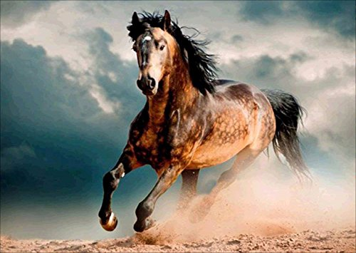DIY 5D Diamond Painting by Number Kits, Pentium Horse Full Drill Embroidery Painting Cross Stitch Arts for Wall Decor 11.8 x 15.8 inch