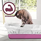 Alfapet Kitty Cat Litter Box Disposable, Elastic
