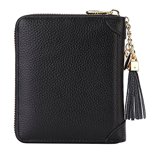 Holds Wallet Photo (SafeCard 40 Card Solts Women's Credit Card Case Wallet 2 ID Window and Zipper Card Holder (40 Card Black))