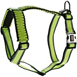 Kong On The Go Reflective Paracord Adjustable Harness