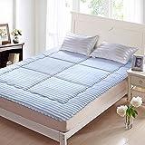DHWJ WCCT Modern fashion mattress,Lay on the floor cushion back,Tatami mattress-A 135x200cm(53x79inch)