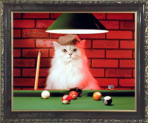Cats Playing Pool - Impact Posters Gallery Framed Wall Decoration Picture Cute Cat Persian Playing Pool Kids Room Mahogany Art Print