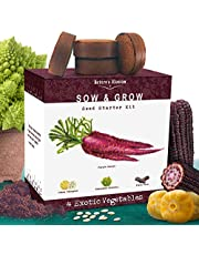 Nature's Blossom Exotic Vegetables Growing Kit. Grow 4 Unusual Plants from Seeds - Purple Carrots, Black Corns, Yellow Lemon Cucumbers, Romanesco Broccoli ; Gardening Gift for Kids and Adults