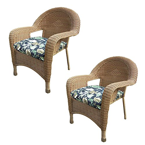 Resin Wicker Arm Chair with Cushion 90030-C-BF-HN Pack of 2