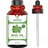 Basil Oil - 100% Pure and Natural - 4 oz. with Glass Dropper - Therapeutic Grade - Excellent for Removing Bacteria, Purifying Air, Aromatherapy, Massage, and Ear Infections by Essential Oil Labs