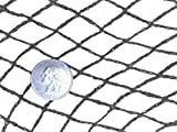 Green Vista 1/2 Inch Commercial Quality Bird Barrier Netting 20x100 Feet - Protects Vegetables, Fruit Trees, Berry Shrubs, Flowers - Small Holes, Heavy Duty, UV Resistance, Steel Stakes