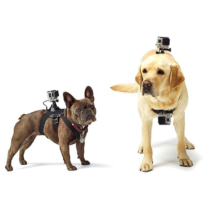 Egurs Arnés para Perros Cinturón Ajustable para el Pecho Soporte para el cinturón Montar el GoPro Hero 6/5 / 5 Session / 4 Session / 4/3 + / 3/2/1, ...