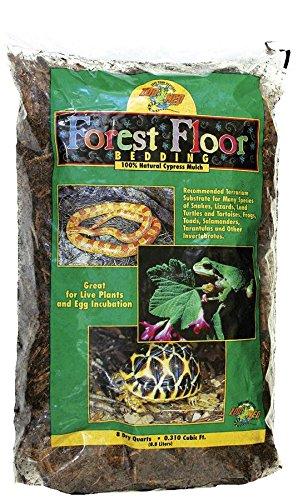 Zoomed 40006024 Forest Floor Croci CM8